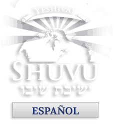 logo_shuvu_web_espanol_228x250